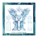 Pump It Up (Original Mix) feat.Nyemiah Supreme/A.N.D.Y.