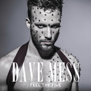Feel The Fire/Dave Mess