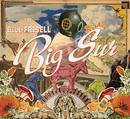 Big Sur/Bill Frisell