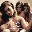 Long Brown Hair (Joachim Garraud Radio Edit Remix)/C.C. Sheffield