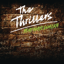Cant Stop feat.Nate Walka/The Thrillers