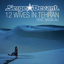 12 Wives In Tehran feat.Nadia Ali/Serge Devant
