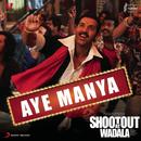 Aye Manya (Remix by Mayur Sahani)/Meet Bros Anjjan