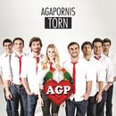Torn/Agapornis