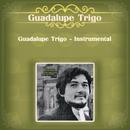 Guadalupe Trigo - Instrumental/Guadalupe Trigo