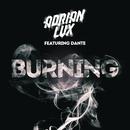 Burning feat.Dante Kinnunen/Adrian Lux
