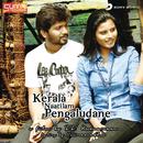 Kerala Naatilam Pengaludane (Original Motion Picture Soundtrack)/S.S. Kumaran