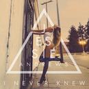 I Never Knew/Jessie Andrews