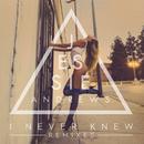 I Never Knew (Remixes)/Jessie Andrews