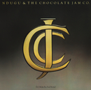 Do I Make You Feel Better (Bonus Track Version)/Ndugu & The Chocolate Jam Company