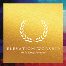 Only King Forever/Elevation Worship