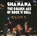 The Golden Age of Rock 'n' Roll/Sha Na Na