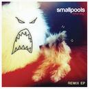 Dreaming Remix EP/Smallpools