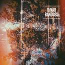 Dinar Bandosu/Dinar Bandosu