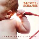 Cuando Amas a Alguien/Noel Schajris