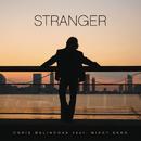 Stranger feat.Mikky Ekko/Chris Malinchak