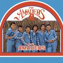Grupo Amadeos/Grupo Amadeos