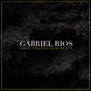 Gold (Thomas Jack Radio Edit)/Gabriel Rios