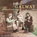 A Song of Home - An Irish American Musical Journey/James Galway