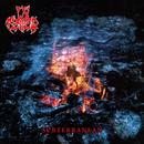 Subterranean (Reissue 2014)/In Flames