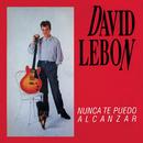 Nunca Te Puedo Alcanzar/David Lebon