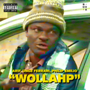 Wollahp feat.Nora Collective/Arif
