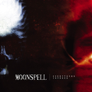 Everything Invaded/Moonspell