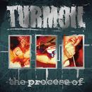 The Process Of/Turmoil