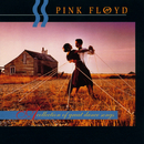 A Collection Of Great Dance Songs/Pink Floyd
