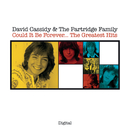Could It Be Forever...The Greatest Hits/David Cassidy