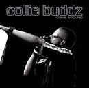 Come Around/Collie Buddz
