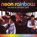 Neon Rainbow - The Best Of The Box Tops/The Box Tops