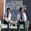 The Scene Aesthetic/The Scene Aesthetic