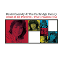 Could It Be Forever - The Greatest Hits/David Cassidy & The Partridge Family