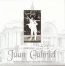 Celebrando 25 Años De Juan Gabriel En El Palacio De Bellas Artes/Juan Gabriel