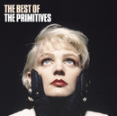 Best Of/The Primitives