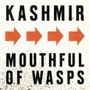 Mouthful Of Wasps/Kashmir