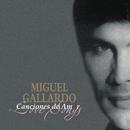 Canciones De Amor De Miguel Gallardo/Miguel Gallardo