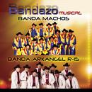Bandazo Musical/Banda Arkangel R-15, Banda Machos