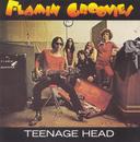 Teenage Head/Flamin' Groovies