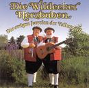 Die ewigen Juwelen der Volksmusik/Die Wildecker Herzbuben