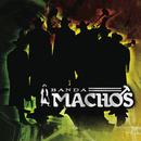 El Sonidito (Ruidito)/Banda Machos