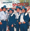 Indomable/Bronco