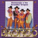 Homenaje A Los Grandes Grupos/Bronco