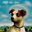 DAISY/Dog's Eye View