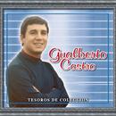Tesoros De Coleccion - Gualberto Castro/Gualberto Castro