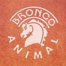 Animal/Bronco