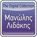 The Digital Collection/Manolis Lidakis