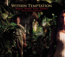 What Have You Done (European Radio Version) feat.Keith Caputo/Within Temptation