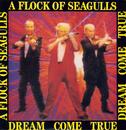 Dream Come True/A Flock Of Seagulls